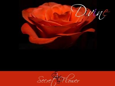 Fay Divine