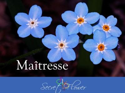 Fay Maîtresse - Secret Flower